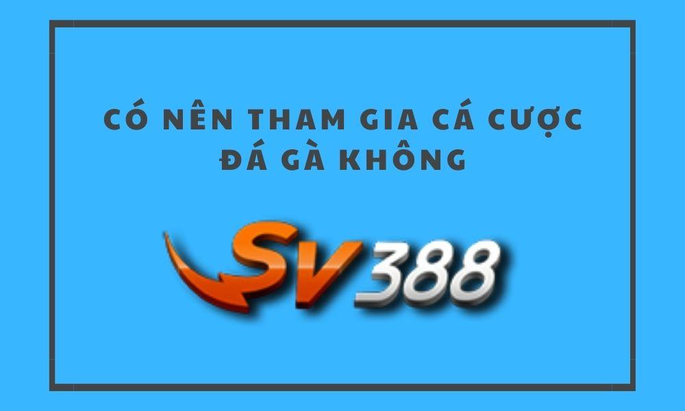 Có nên chơi cá cược đá gà tại SV388 không