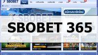 SBOBET 365 – Link VIP tham gia cá cược tại SBOBET 365