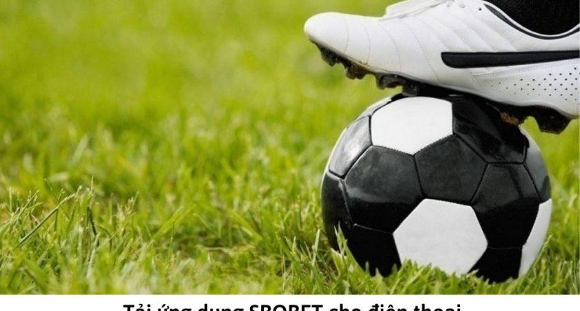 Ứng dụng SBOBET | Đặt cược thể thao trên điện thoại thông qua App SBOBET