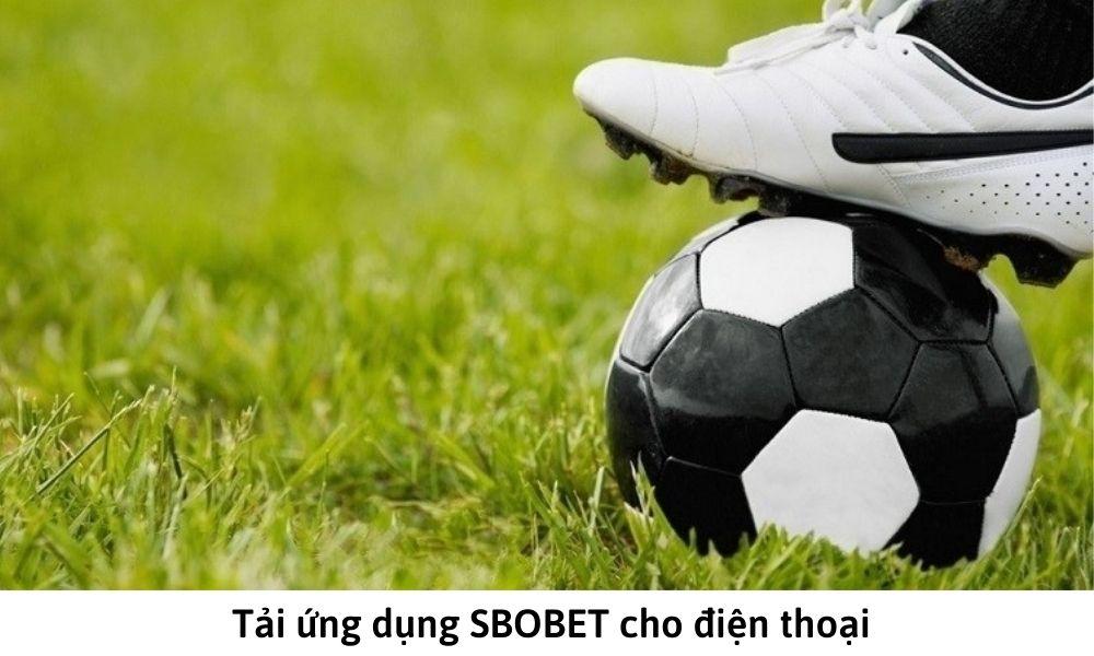 Tải ứng dụng SBOBET cho điện thoại