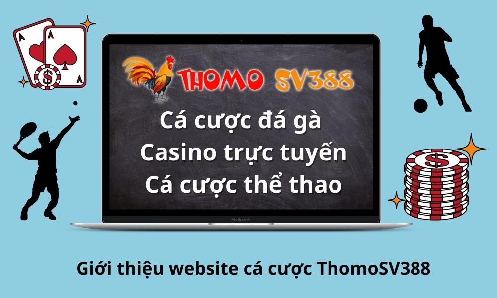 Giới thiệu website cá cược ThomoSV388